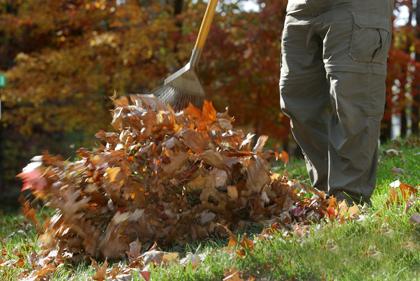 Winterklaar Maken Tuin : Winterklaar maken van uw tuin carel huis tuin keuken
