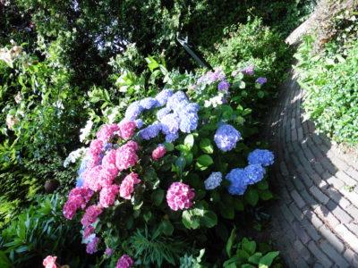 tuin lente klaar